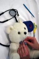 Untersuchung eines Teddy