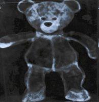 geröngter Teddy